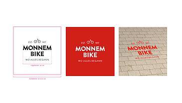 stadt-mannheim-monnem-bike